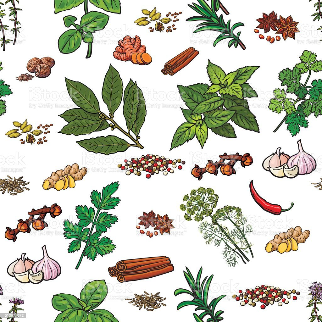 Seamless pattern of hand drawn spices and herbs vector art illustration