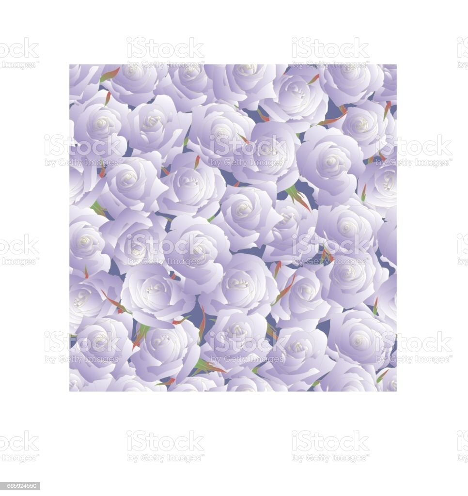 Seamless pattern of roses. Buds of roses. vector illustration vector art illustration