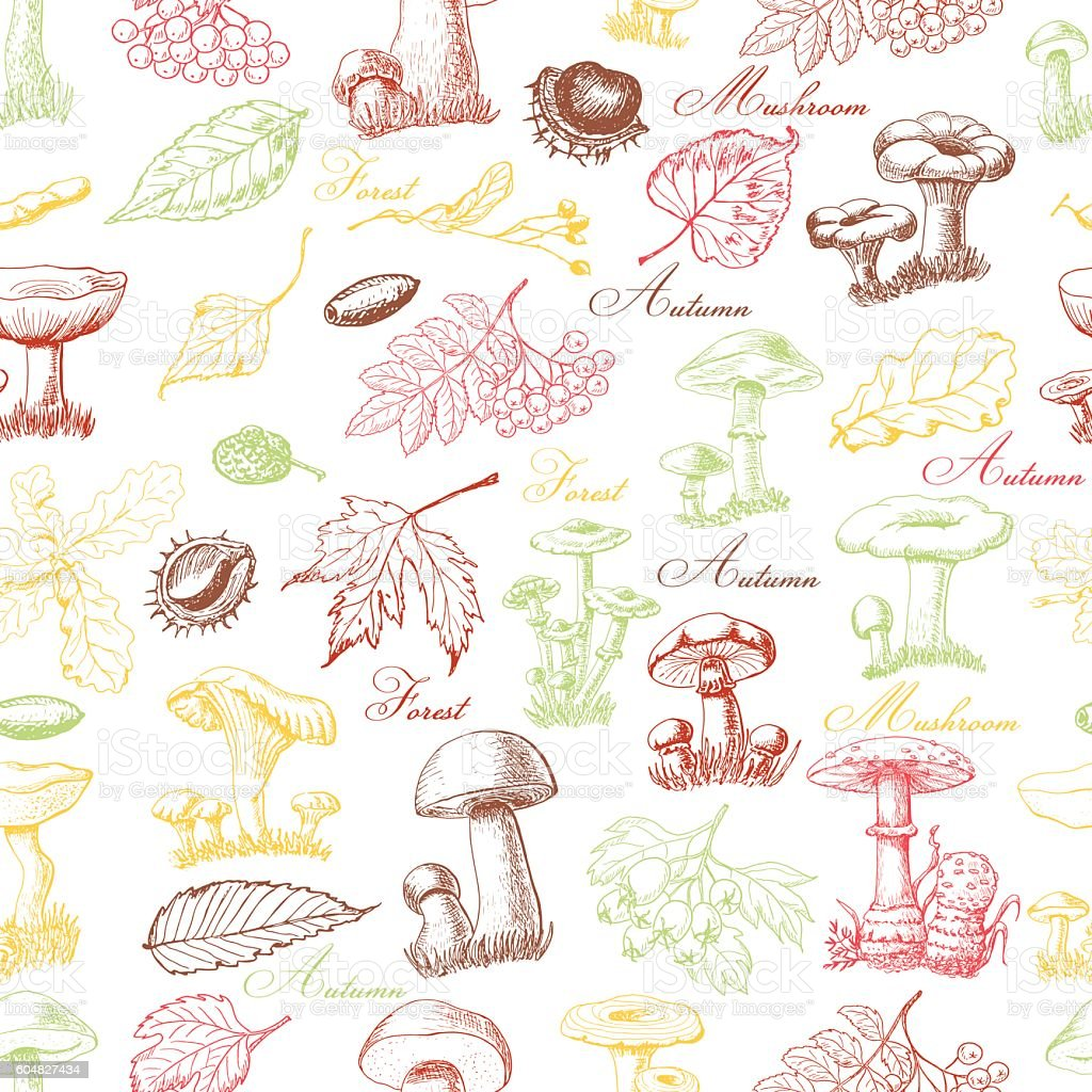 Seamless pattern with colored forest plants and mushrooms vector art illustration