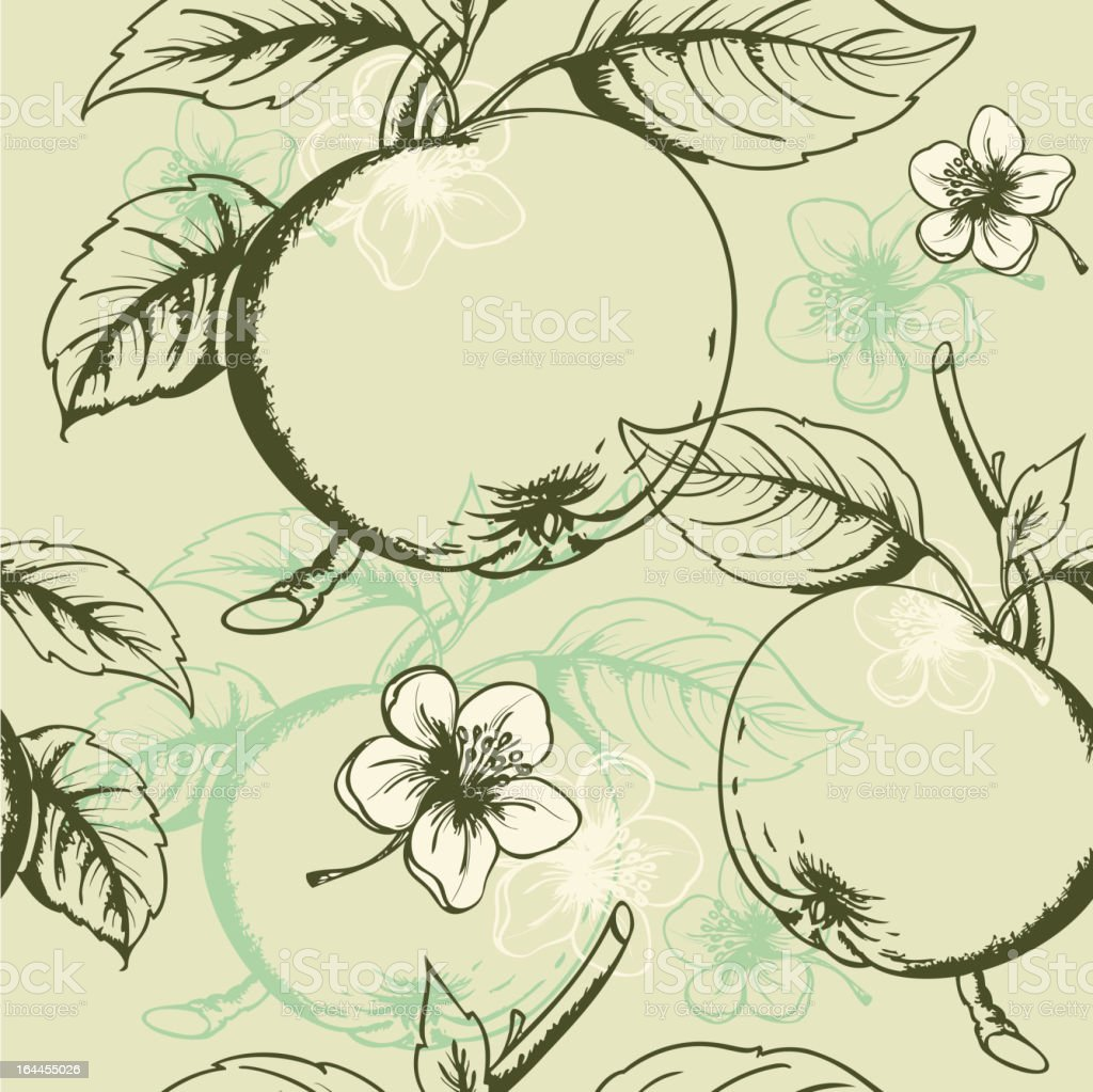 Seamless pattern with fruits and blossoms of the apple tree royalty-free stock vector art