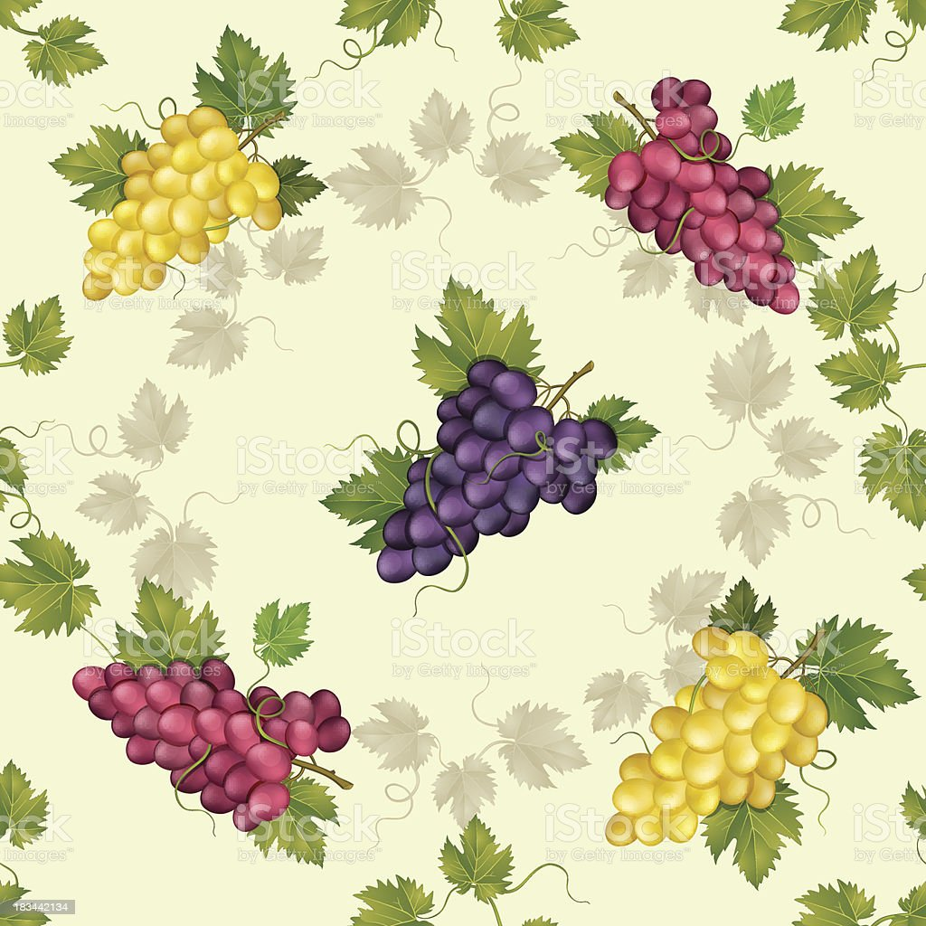 Seamless pattern with grapes and vine. royalty-free stock vector art