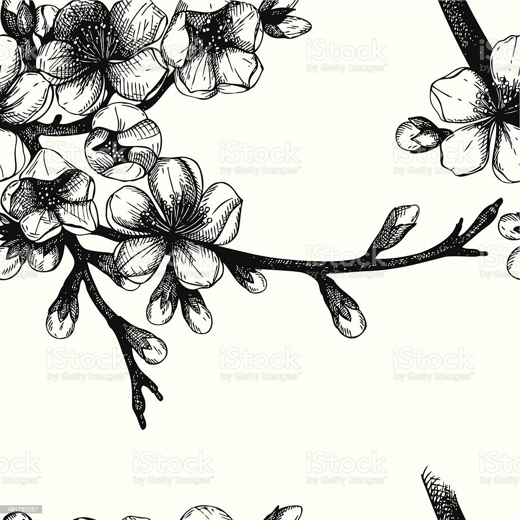Seamless pattern with hand drawn blooming fruit tree twig. royalty-free stock vector art