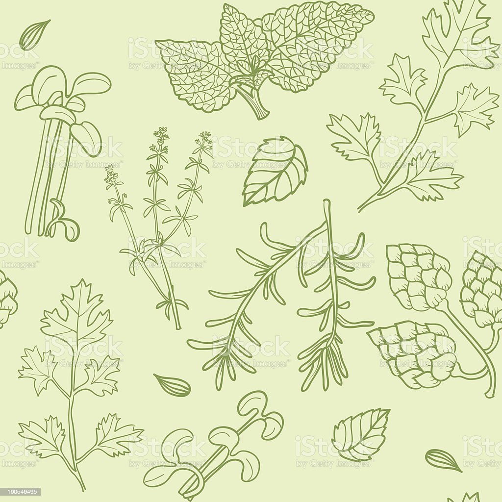 Seamless pattern with hand drawn herbs royalty-free stock vector art