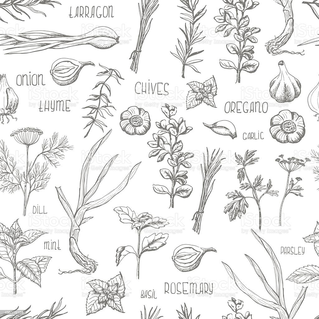 Seamless pattern with herbs and spices vector art illustration