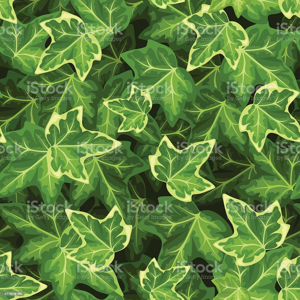 Seamless pattern with ivy leaves. Vector illustration. vector art illustration