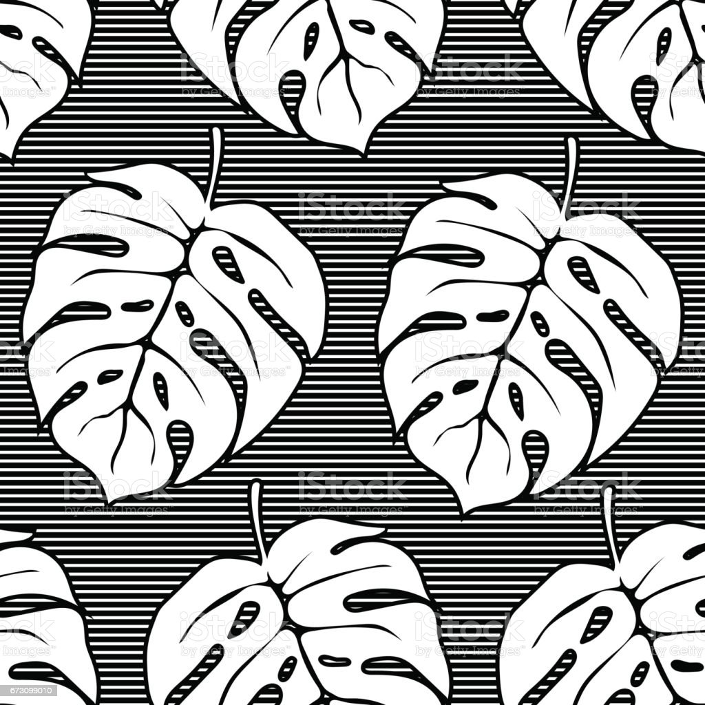 Seamless pattern with monstera leaves in striped background. Black and white. vector art illustration