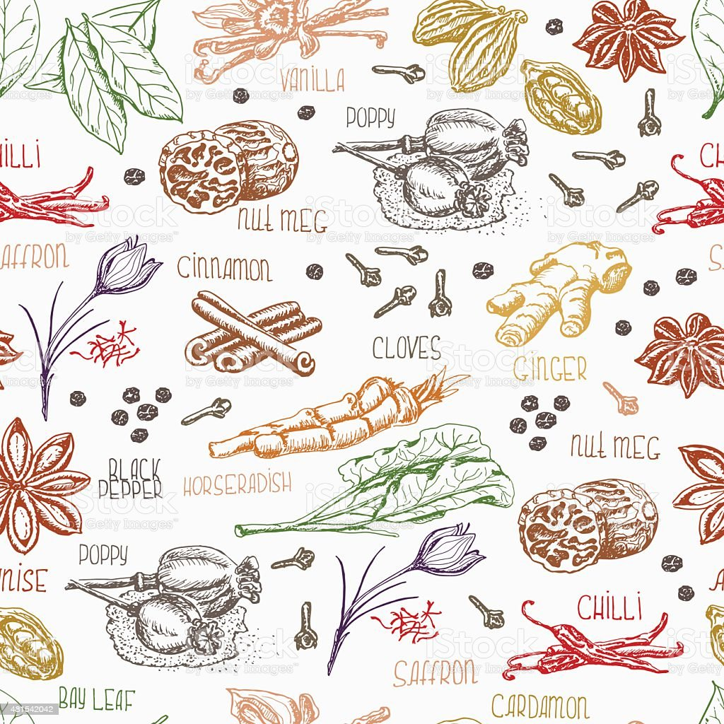 Seamless pattern with multi-colored spices on white background vector art illustration