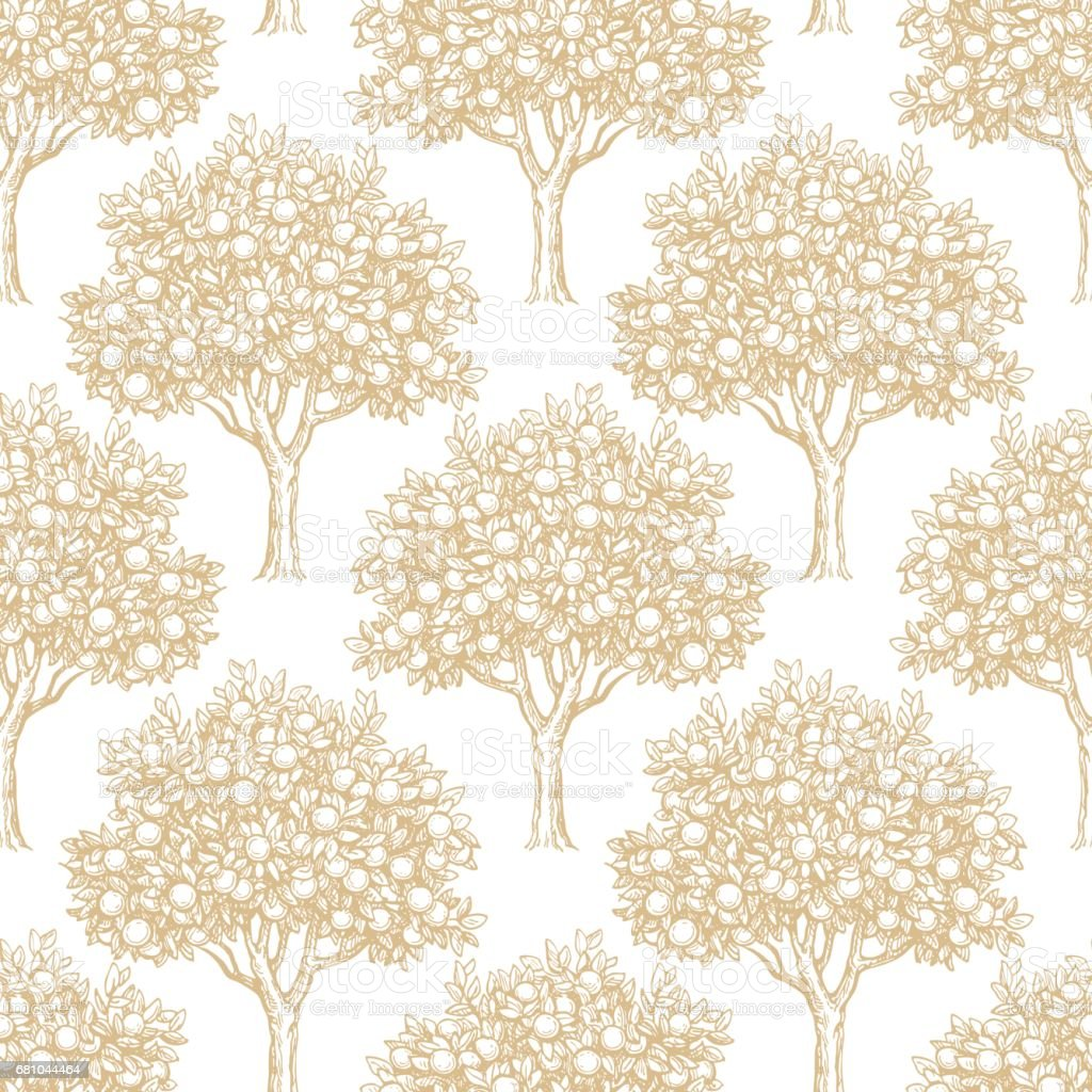 Seamless pattern with orange trees vector art illustration