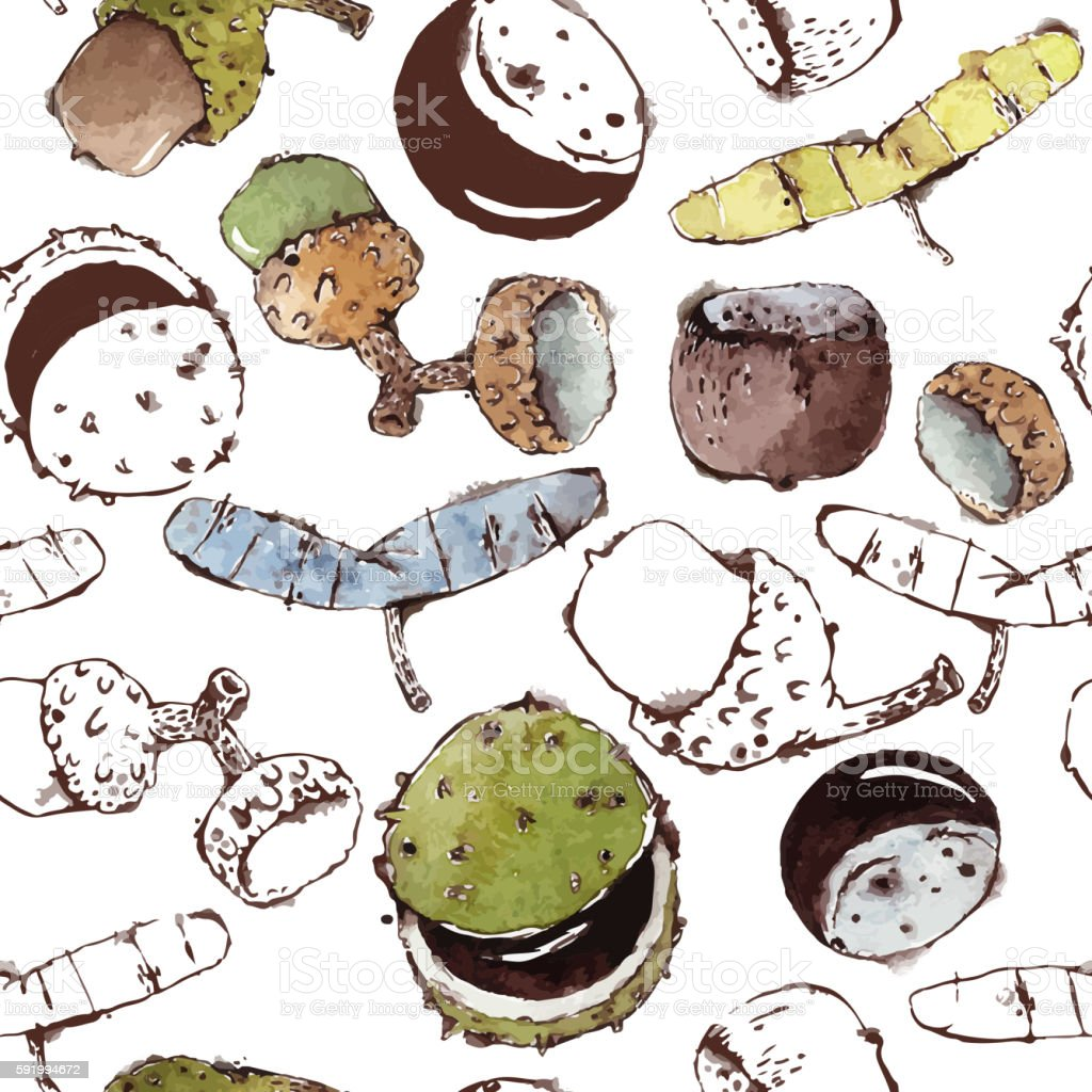 Seamless Pattern with Semipainted Watercolor Seeds and Nuts vector art illustration