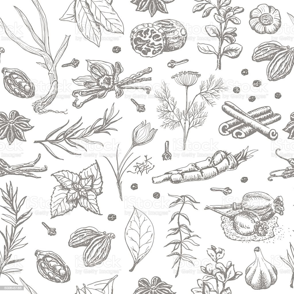 Seamless pattern with spices and herbs on a white background vector art illustration