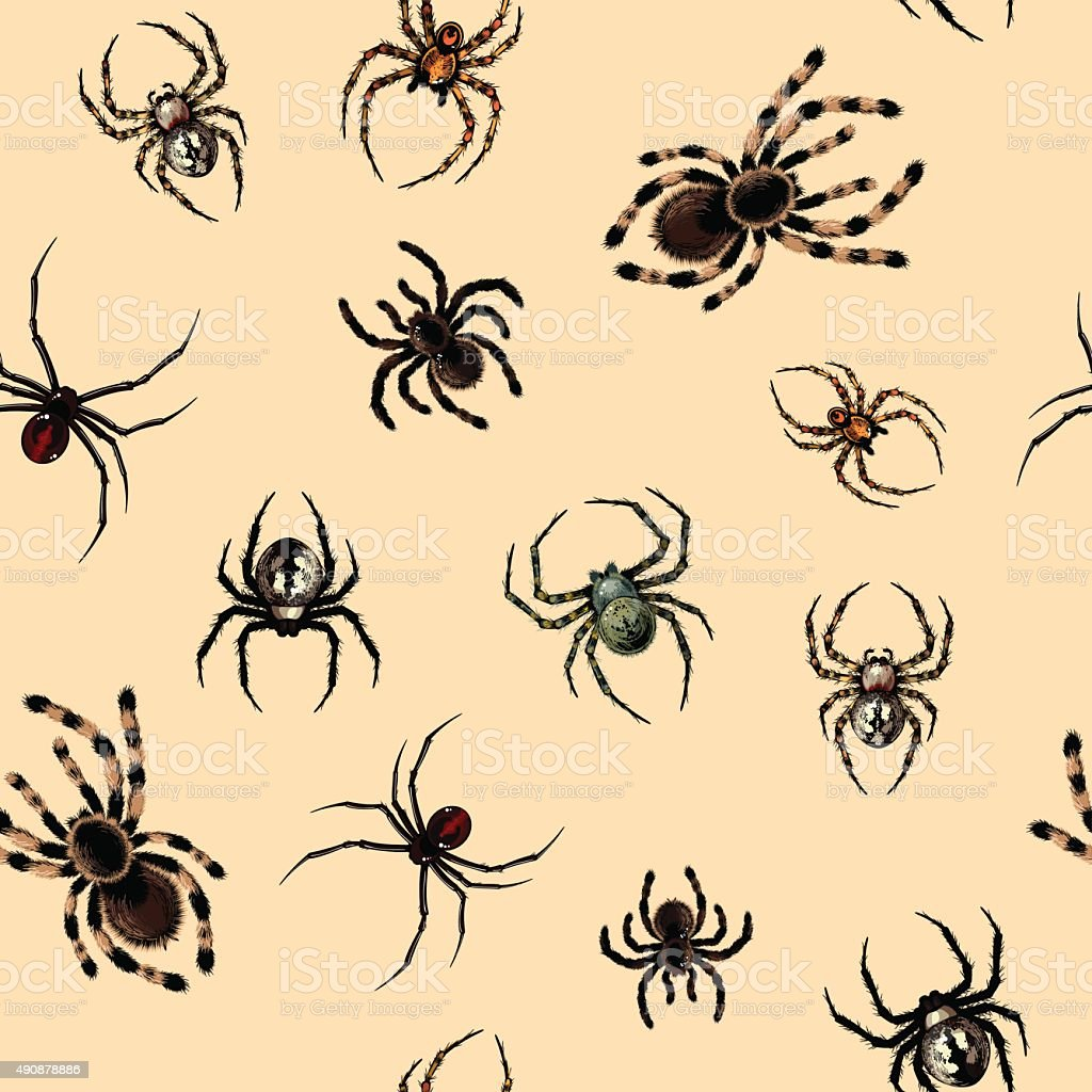 Seamless pattern with spiders vector art illustration