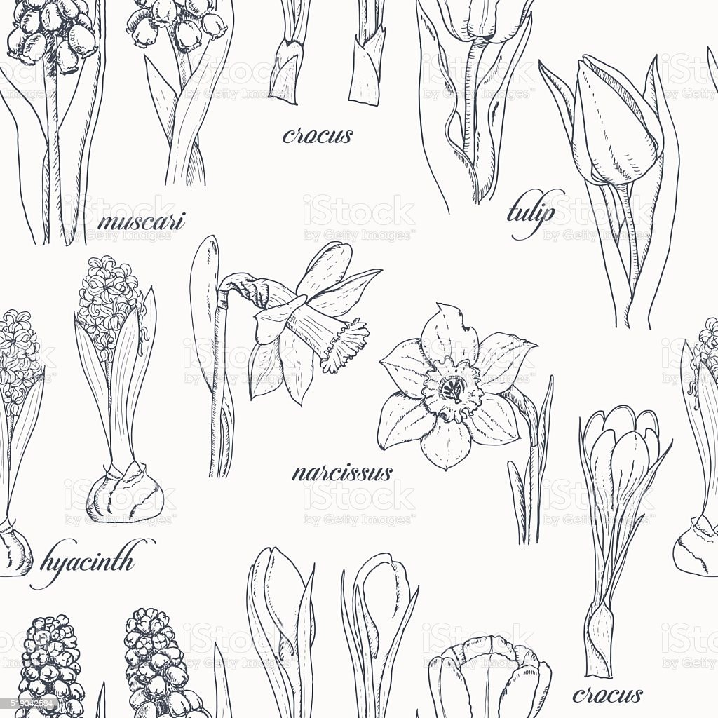 Seamless pattern with spring flowers on a white background vector art illustration