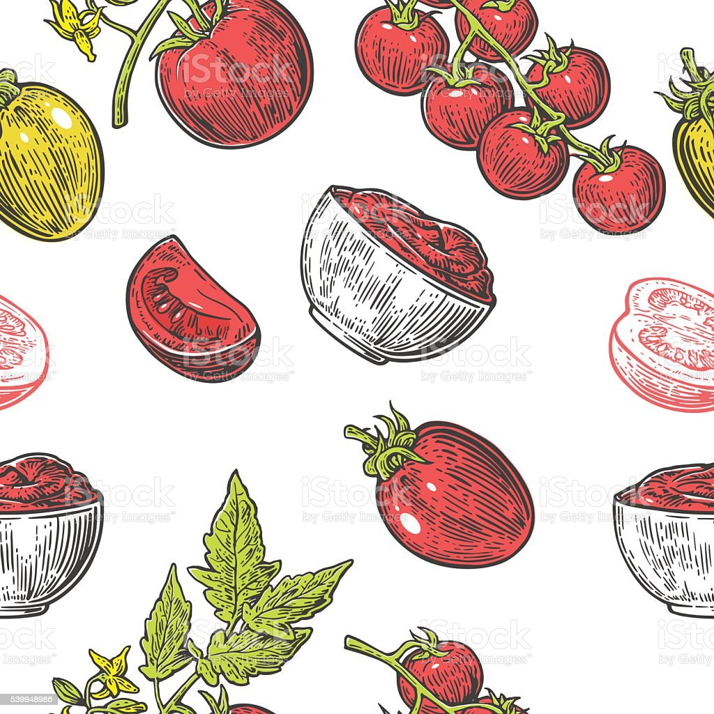 Seamless pattern with Tomato half, slice and branch. vector art illustration