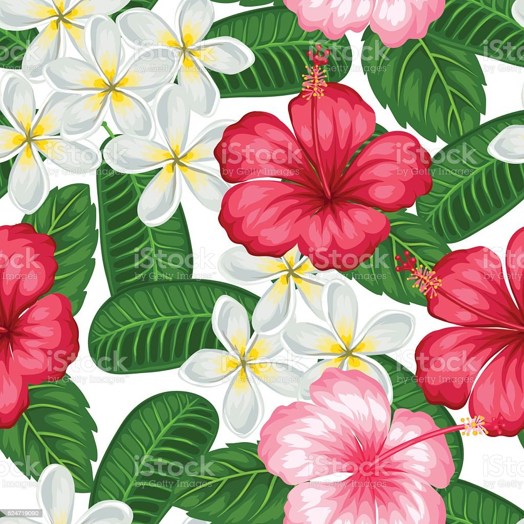 Seamless pattern with tropical flowers hibiscus and plumeria seamless pattern with tropical flowers hibiscus and plumeria background made royalty free stock vector dhlflorist Image collections