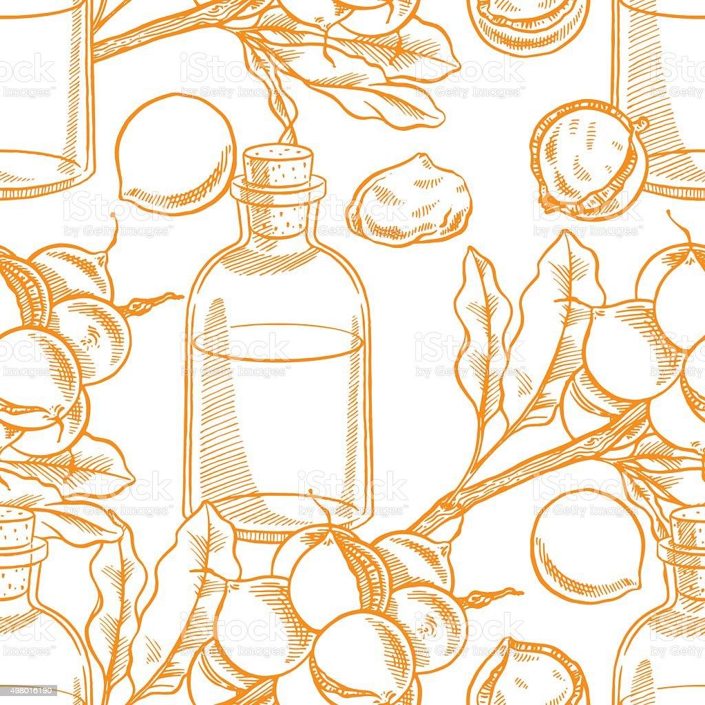 seamless sketch macadamia oil vector art illustration