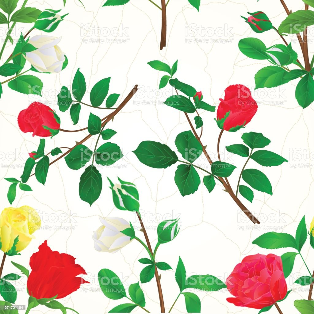 Seamless texture Bouquet of rosebuds red white and yellow roses cracks vintage vector vector art illustration
