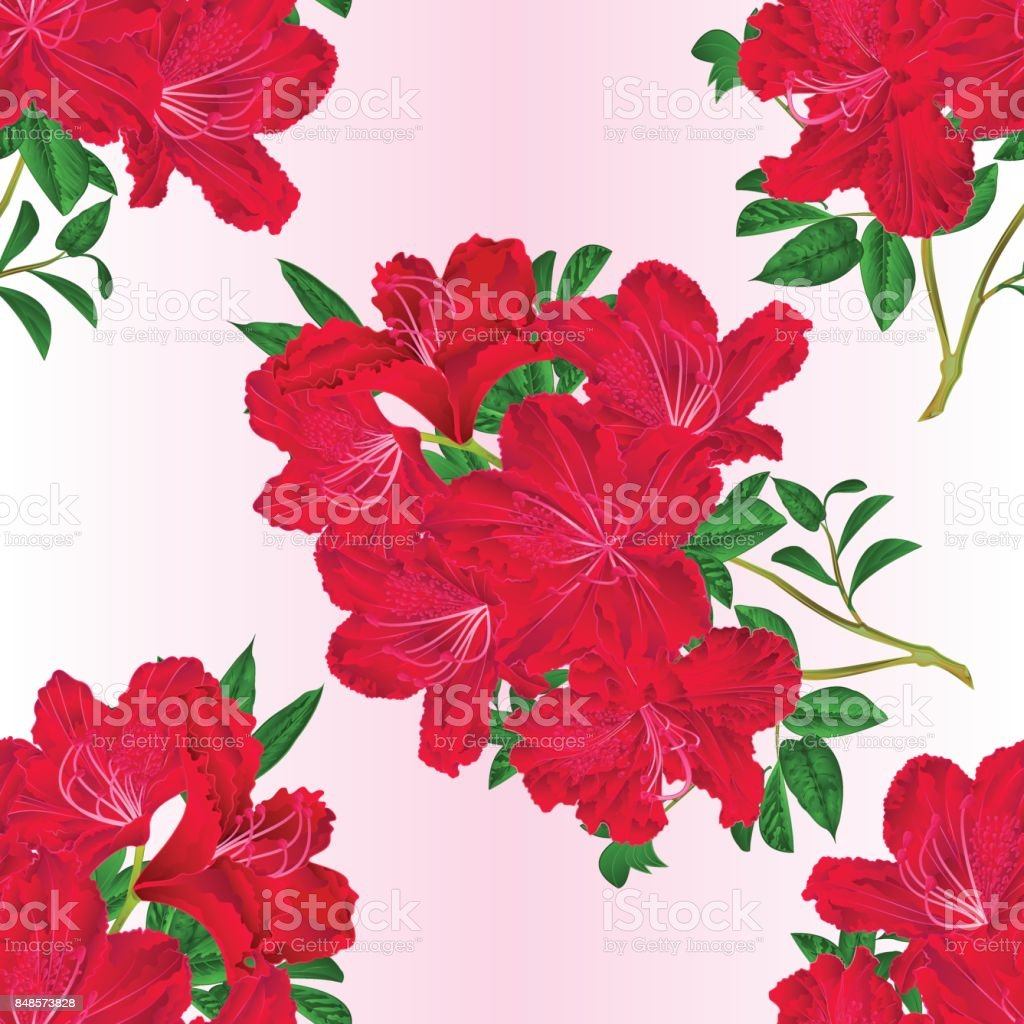 Seamless texture twig red rhododendron   flowers and leaves   vintage botanical vector editable illustration vector art illustration
