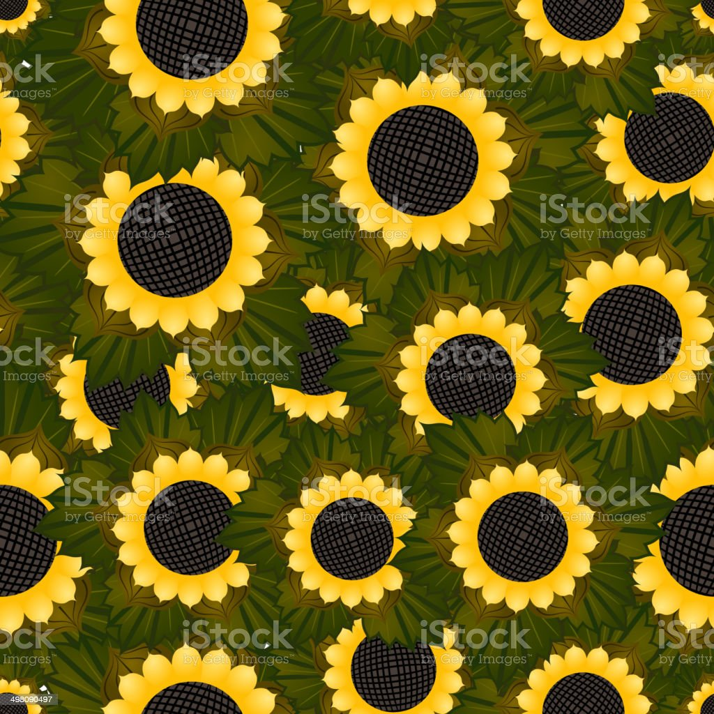 Seamless texture with sunflowers and green leaves vector art illustration