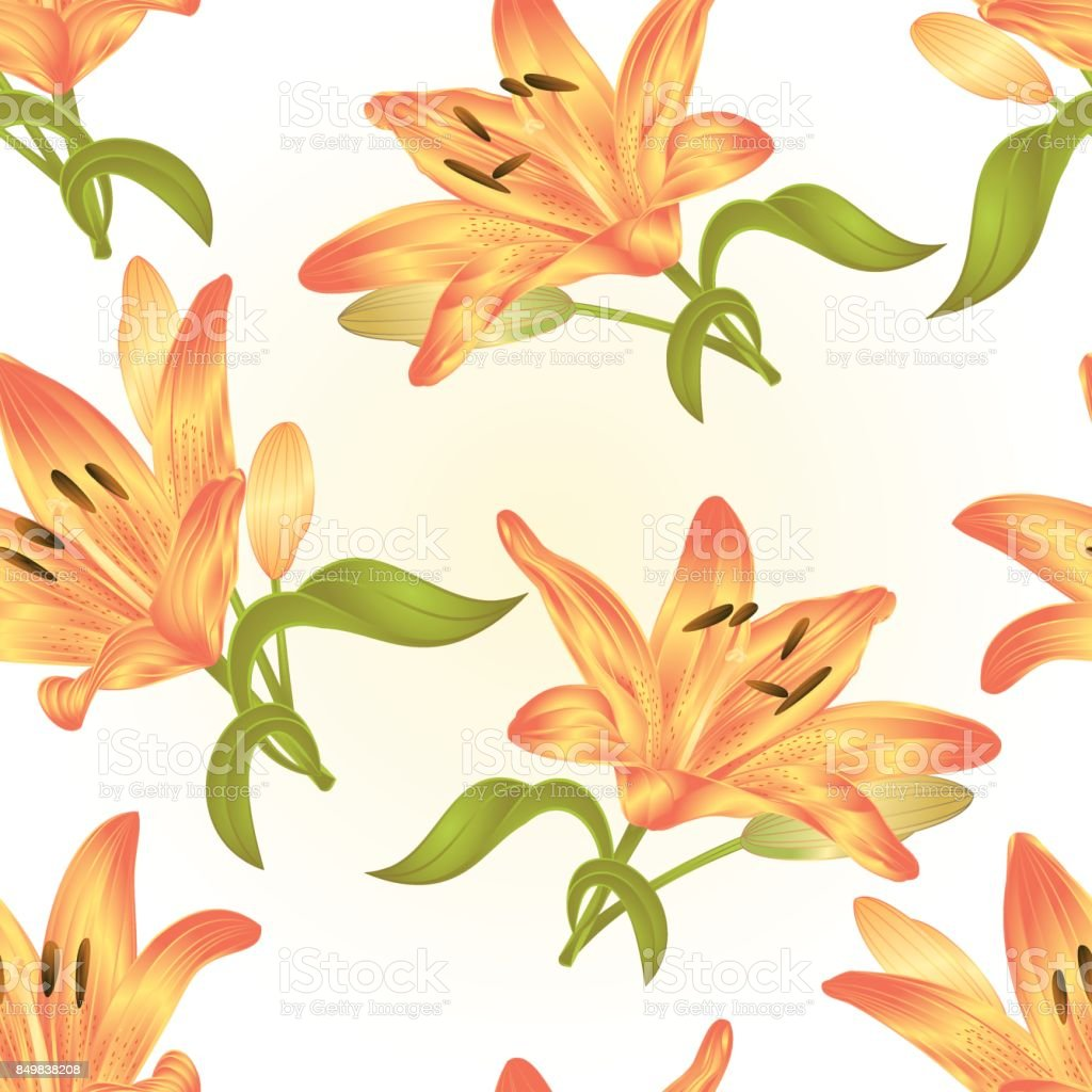 Seamless texture yellow Lily flower with leaves and bud on a white background vector illustration editable vector art illustration