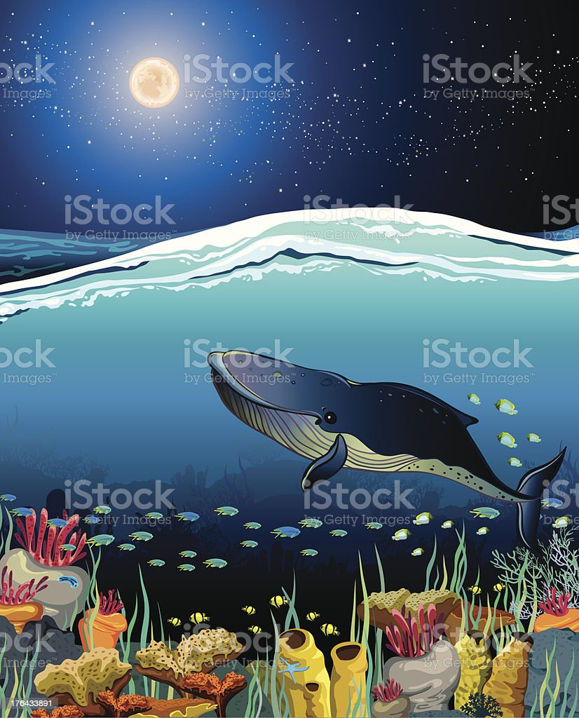 Seascape with floating whale and night sky royalty-free stock vector art