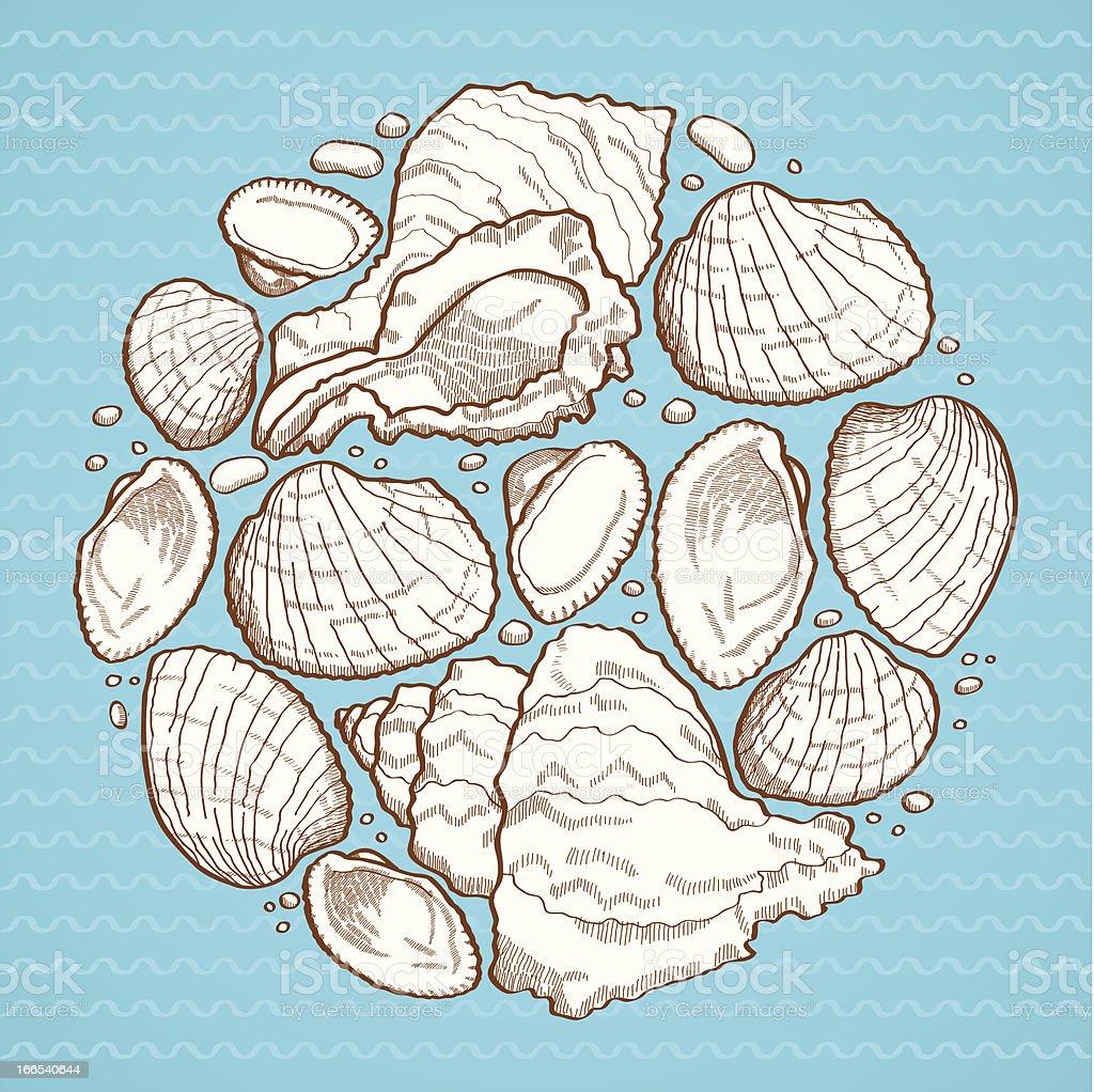 Seashell round design element royalty-free stock vector art