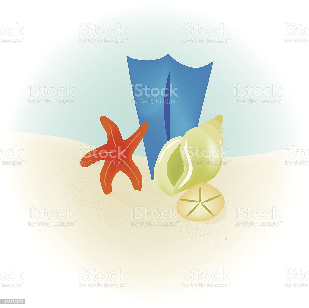 Seashells on Beach vector art illustration