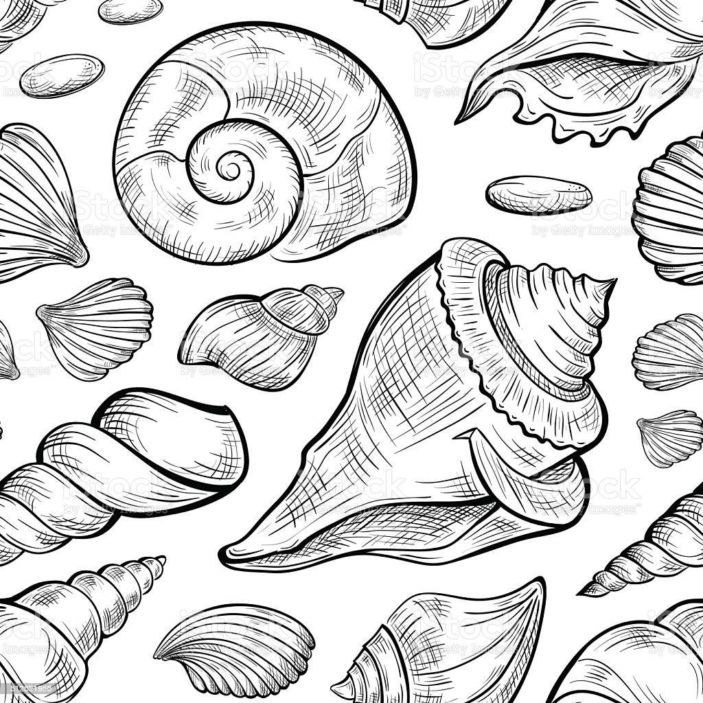 seashells sketches seamless pattern stock vector art 512521956
