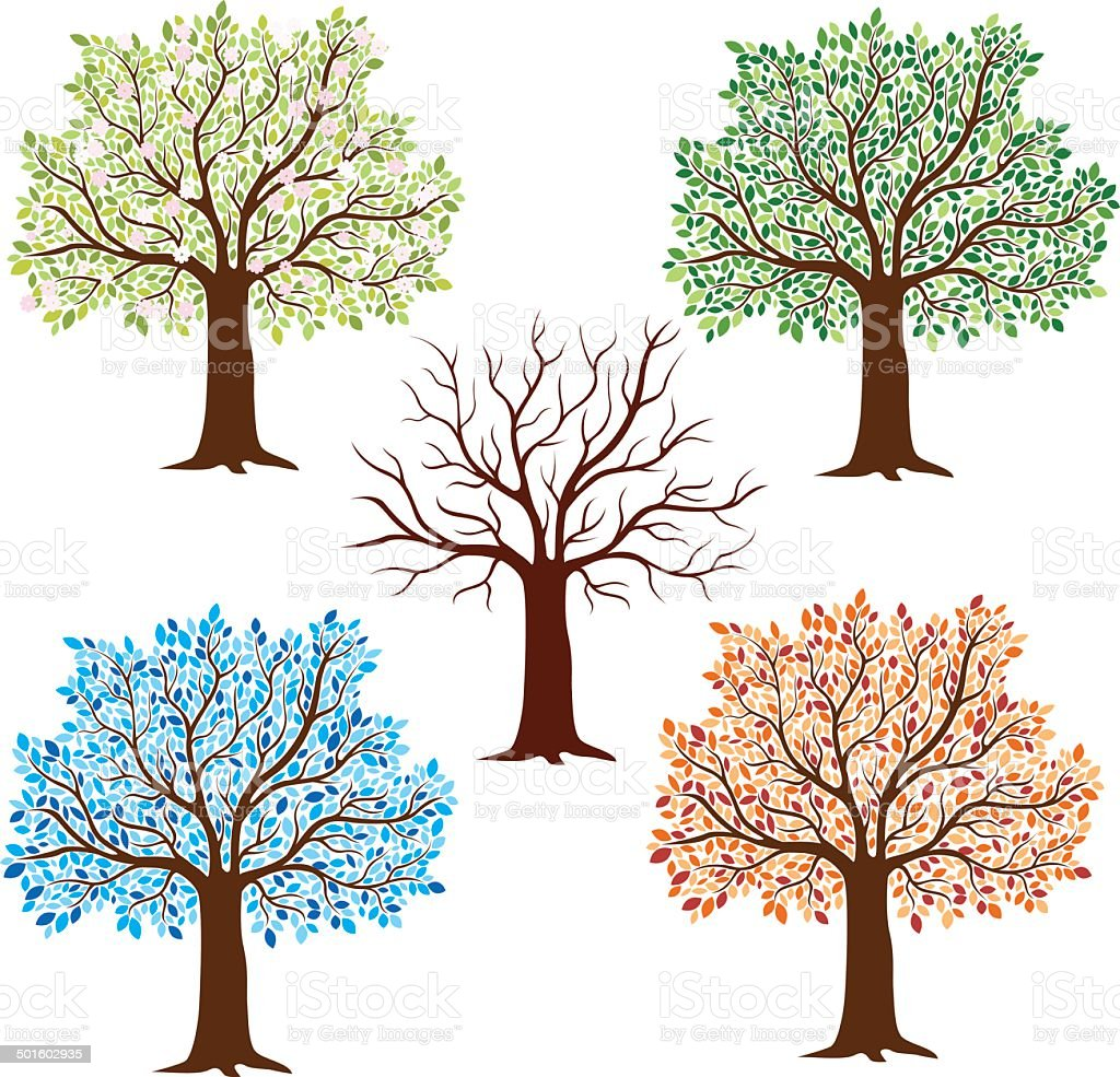 Seasonal Trees vector art illustration
