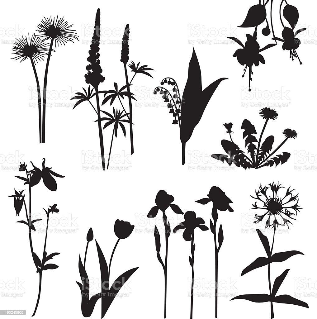 Seasonnals vector art illustration