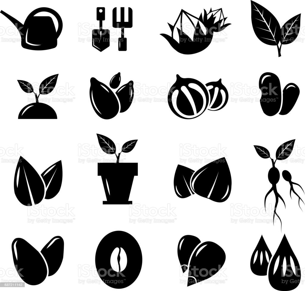 Seed and gardening vector icons vector art illustration