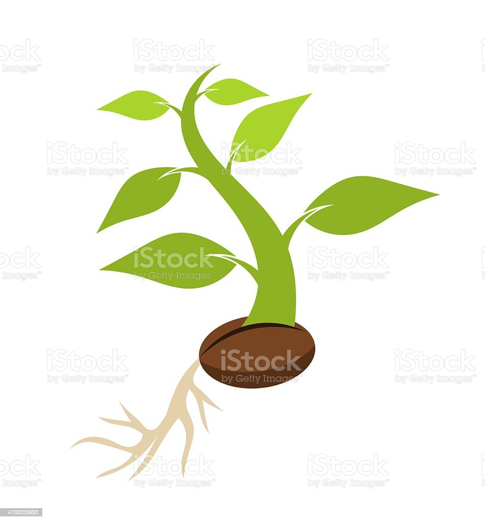 Seedling vector art illustration
