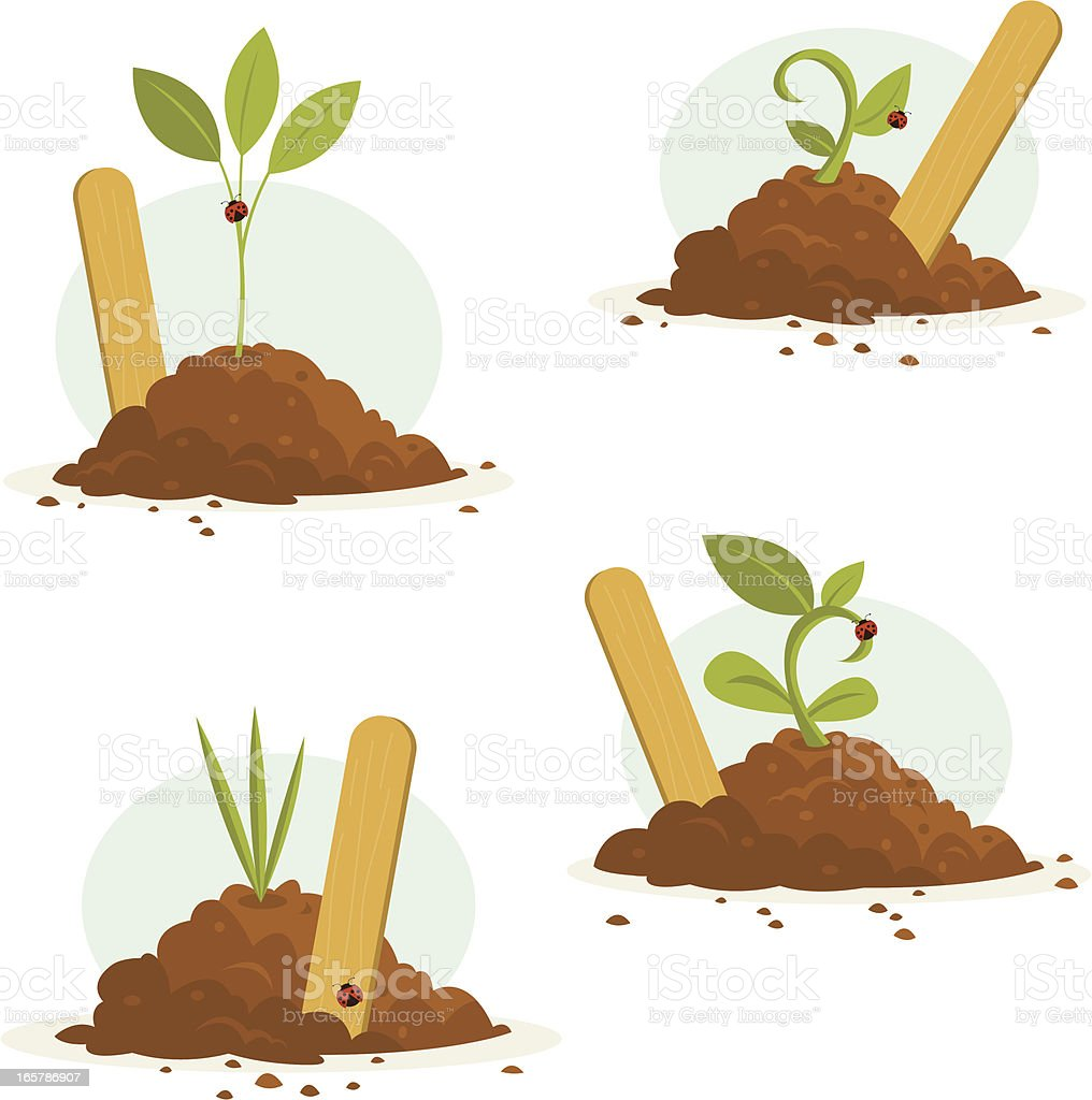 Seedlings with Markers Set vector art illustration