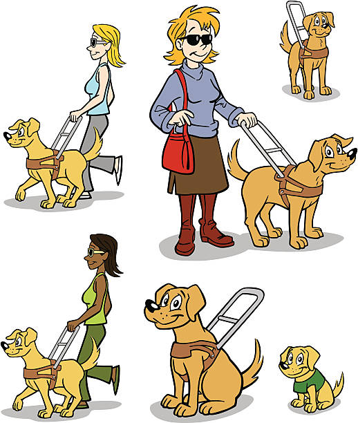 Guide Dog Training Clip Art, Vector Images & Illustrations - iStock