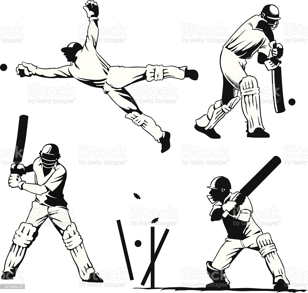 Selected Cricket Players in Action vector art illustration