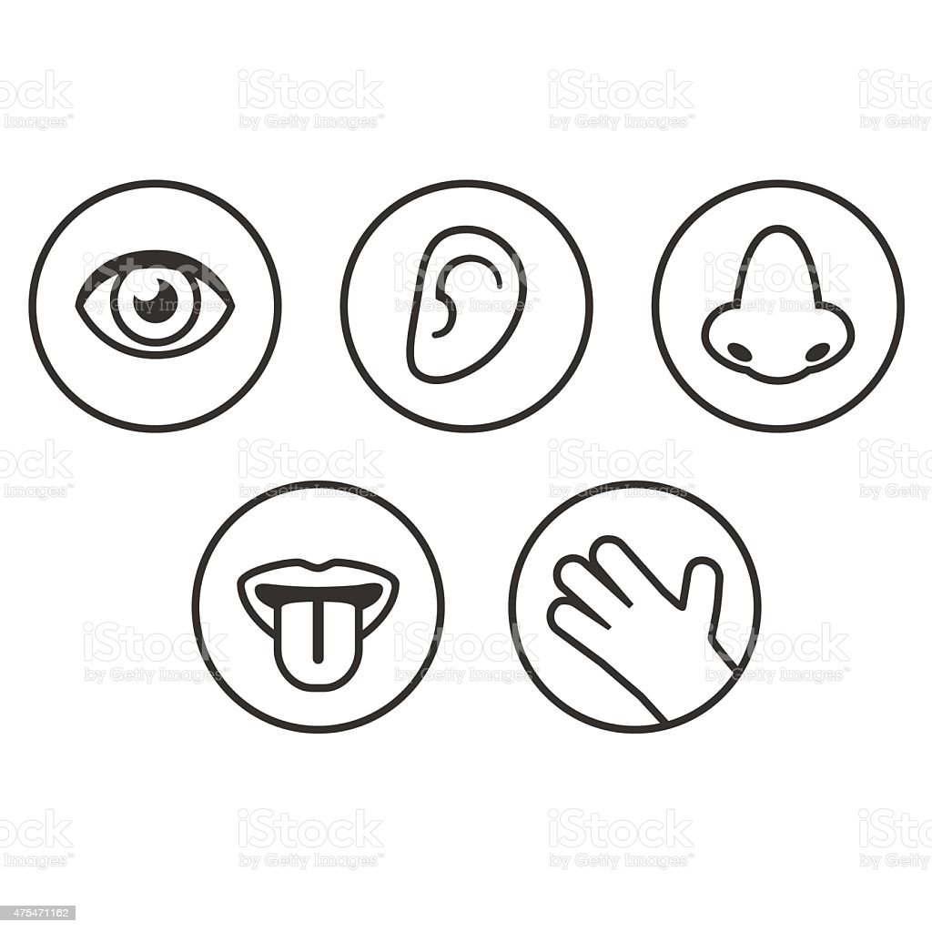 Senses icons vector art illustration