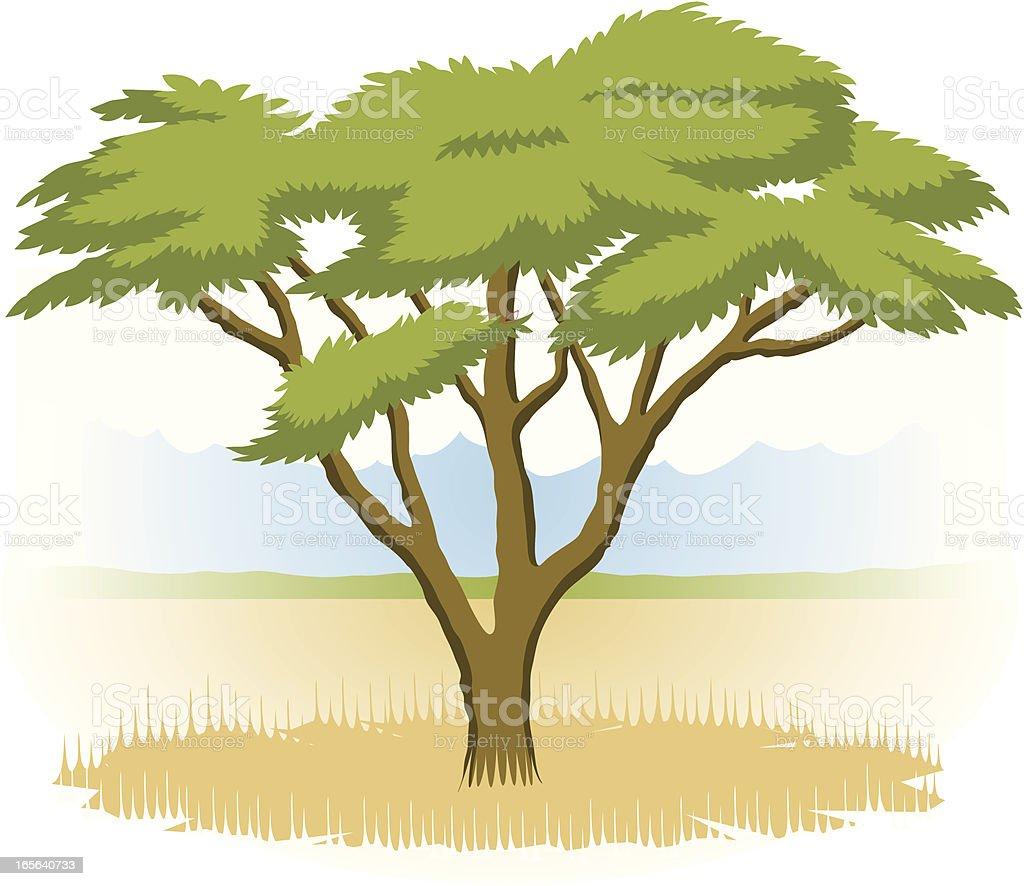 Serengeti Tree vector art illustration