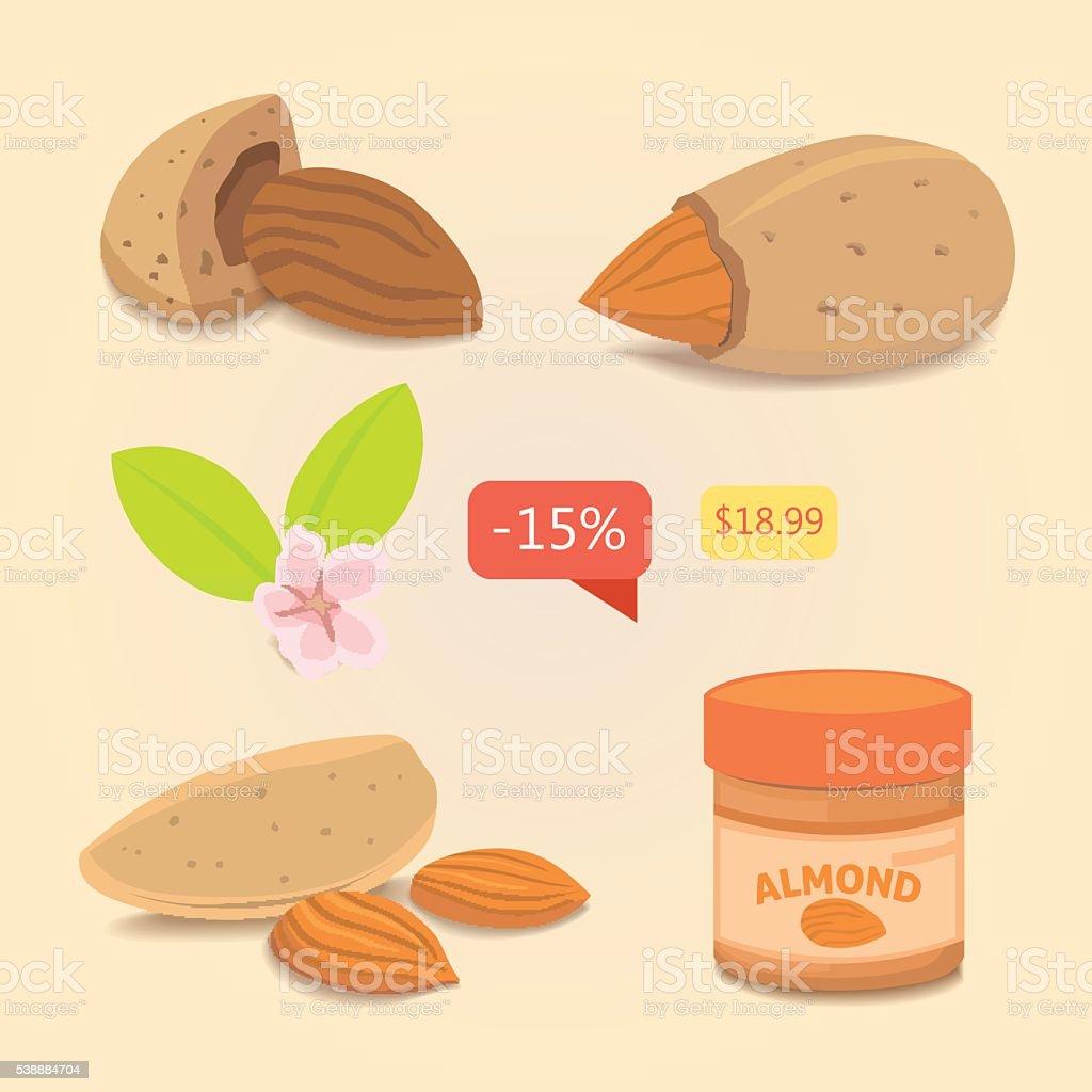 Set Almond. Vector collection of nuts illustration vector art illustration