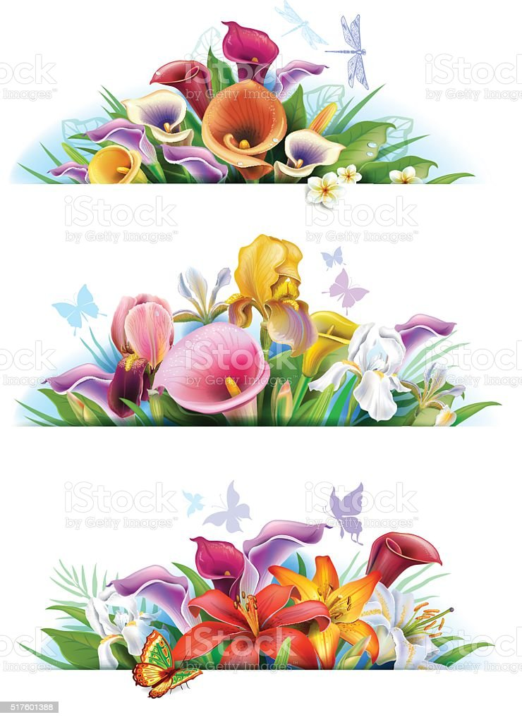 Set banners with flowers vector art illustration