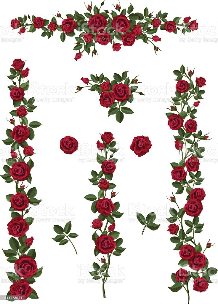 set brushes flowers climbing red roses vector art illustration