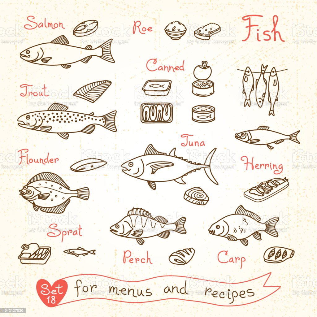 Set drawings of fish for design menus, recipes and packing vector art illustration
