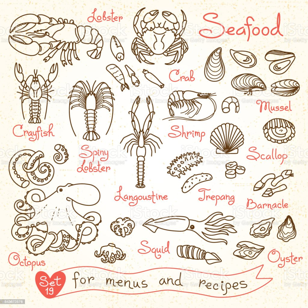 Set drawings of seafood for design menus, recipes, packaging and vector art illustration