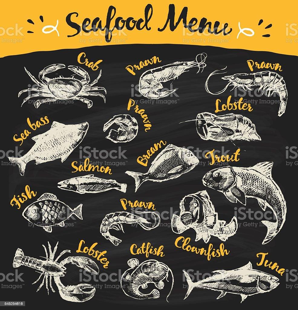 Set drawn seafood fish vector blackboard sketch vector art illustration