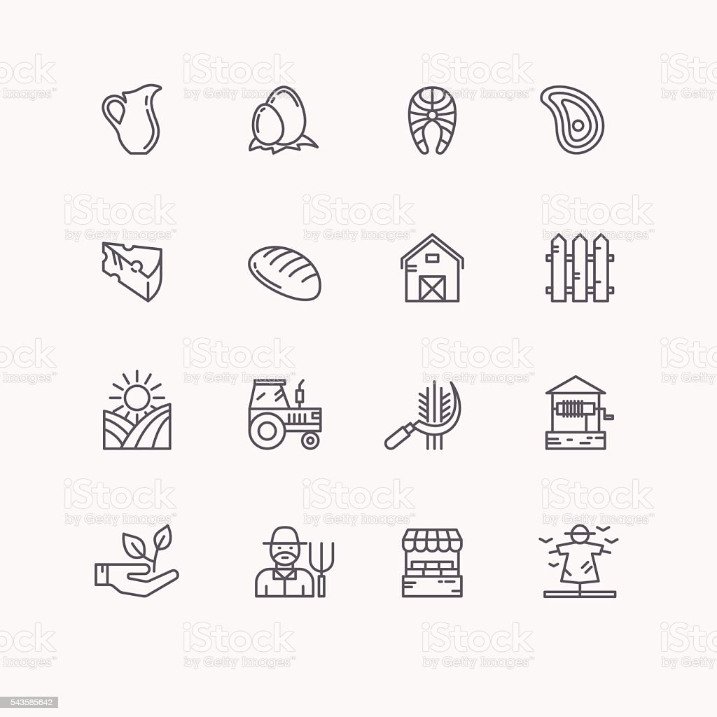 Set flat icons of linear natural products. vector art illustration