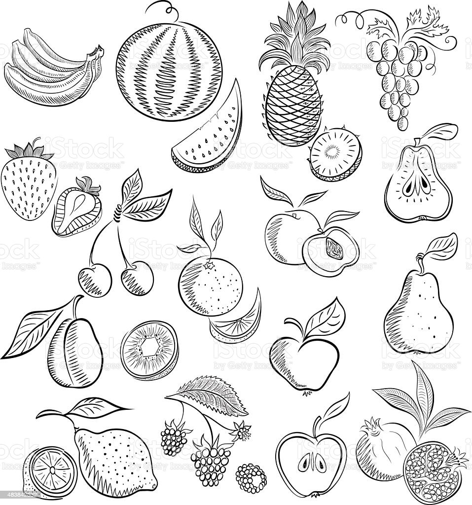 Set from fruit and berries . Drawing sketch. vector art illustration