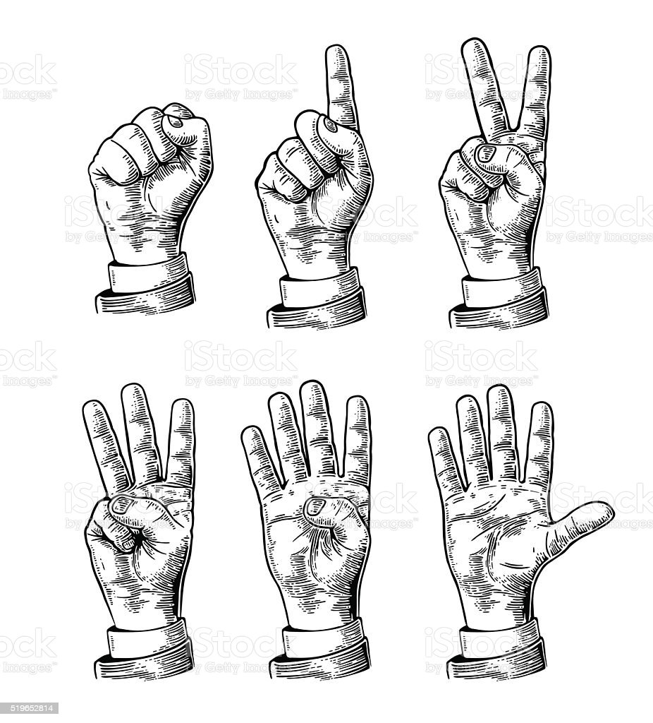 Set gestures of hands counting from zero to five vector art illustration