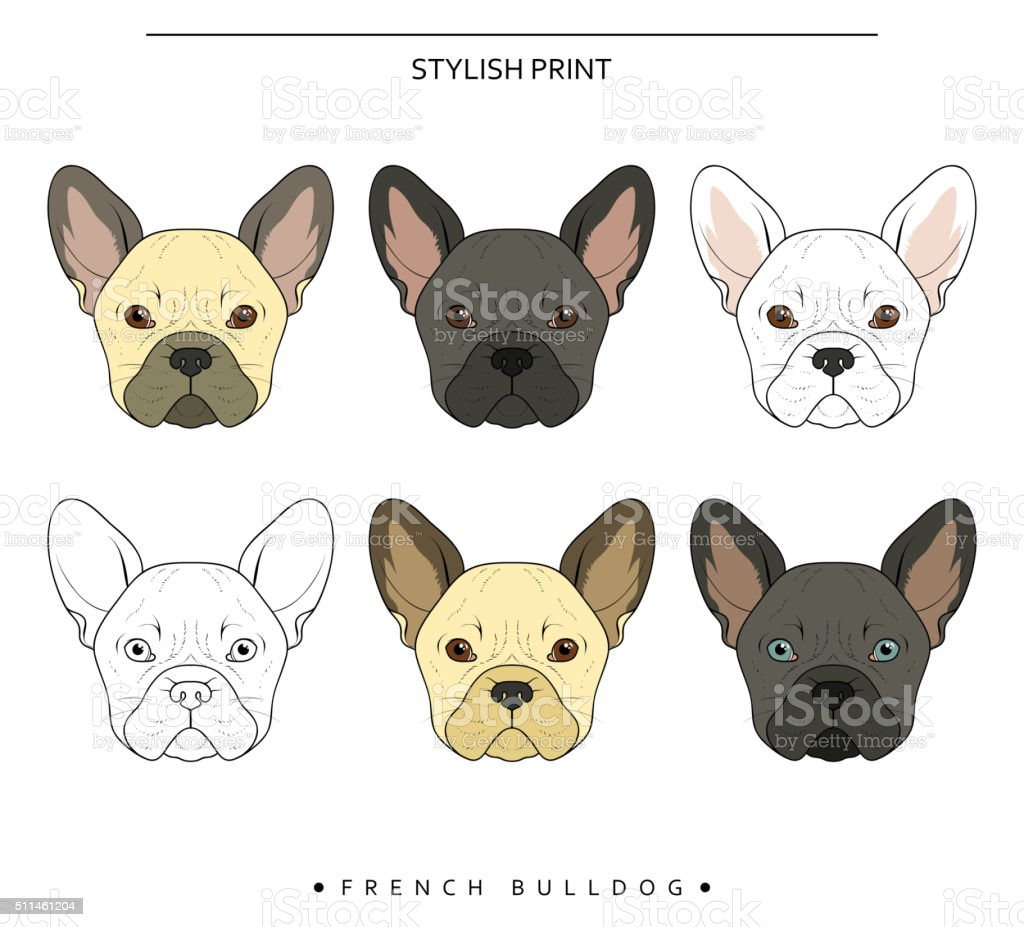 set goals sketch french bulldog different color cute dog stock