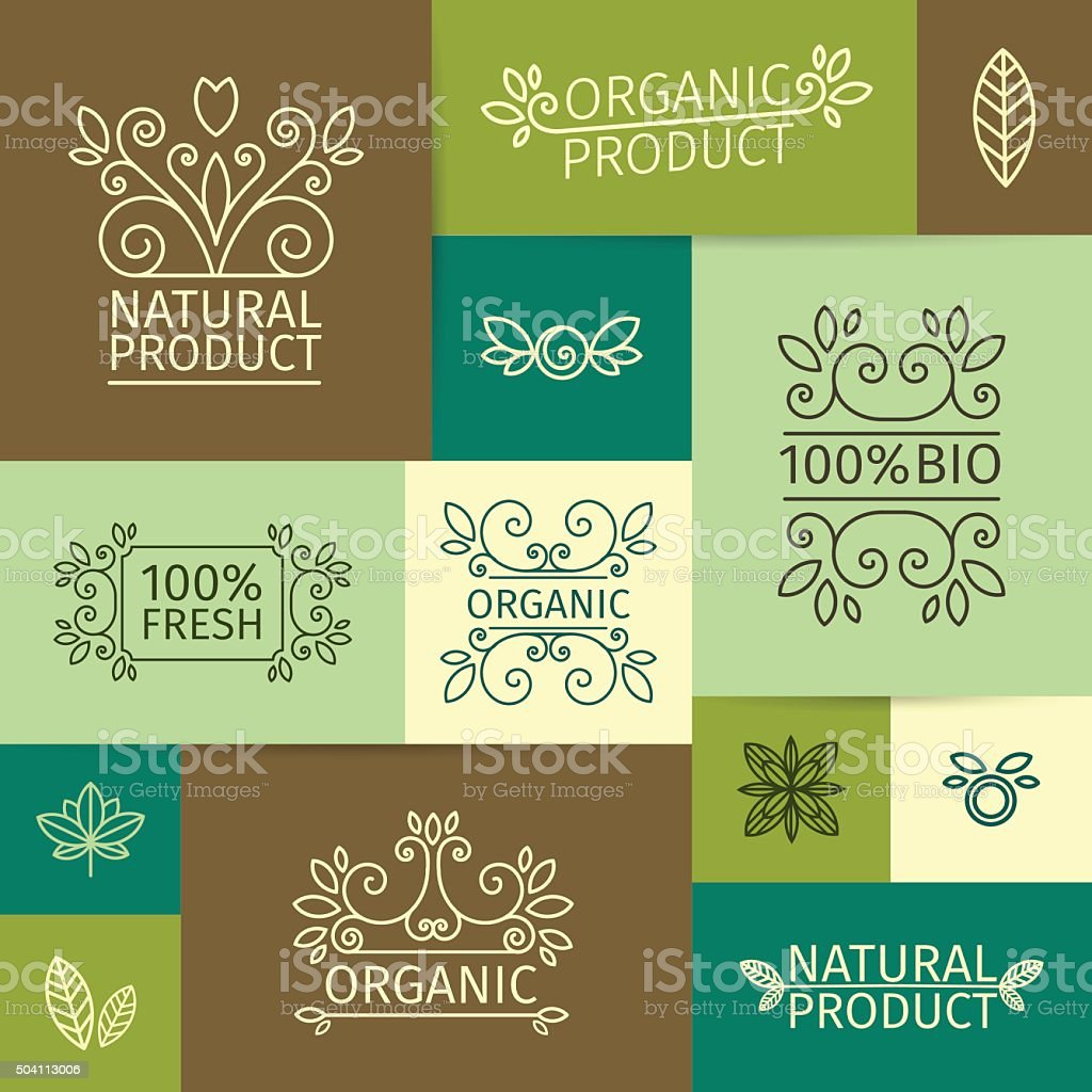 Set logos in a linear style with swirls, leaves, branches vector art illustration