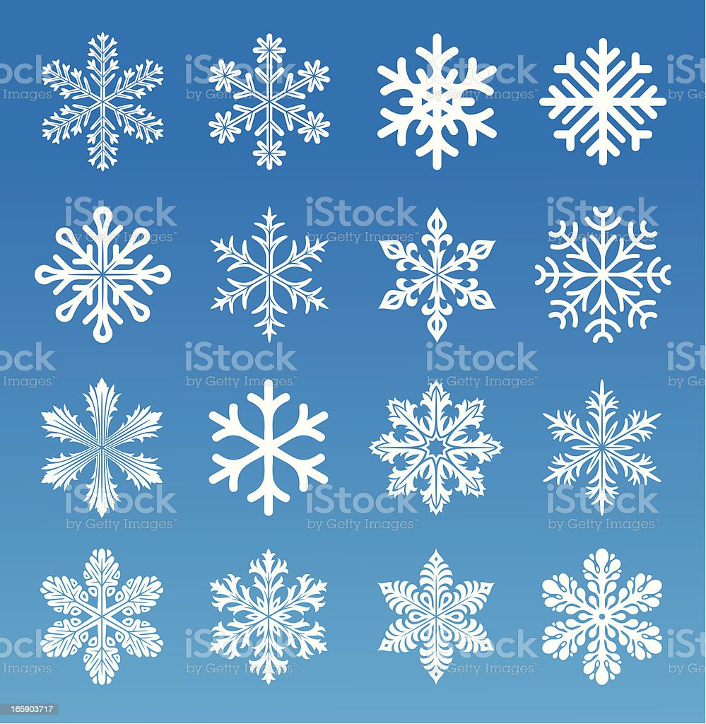 Set of 16 vector image snowflakes vector art illustration
