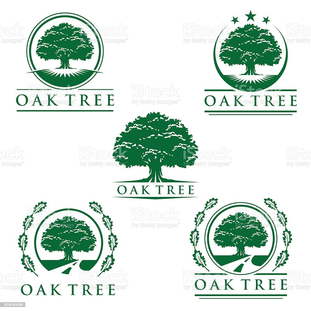 Set of abstract oak tree logo vector design vector art illustration