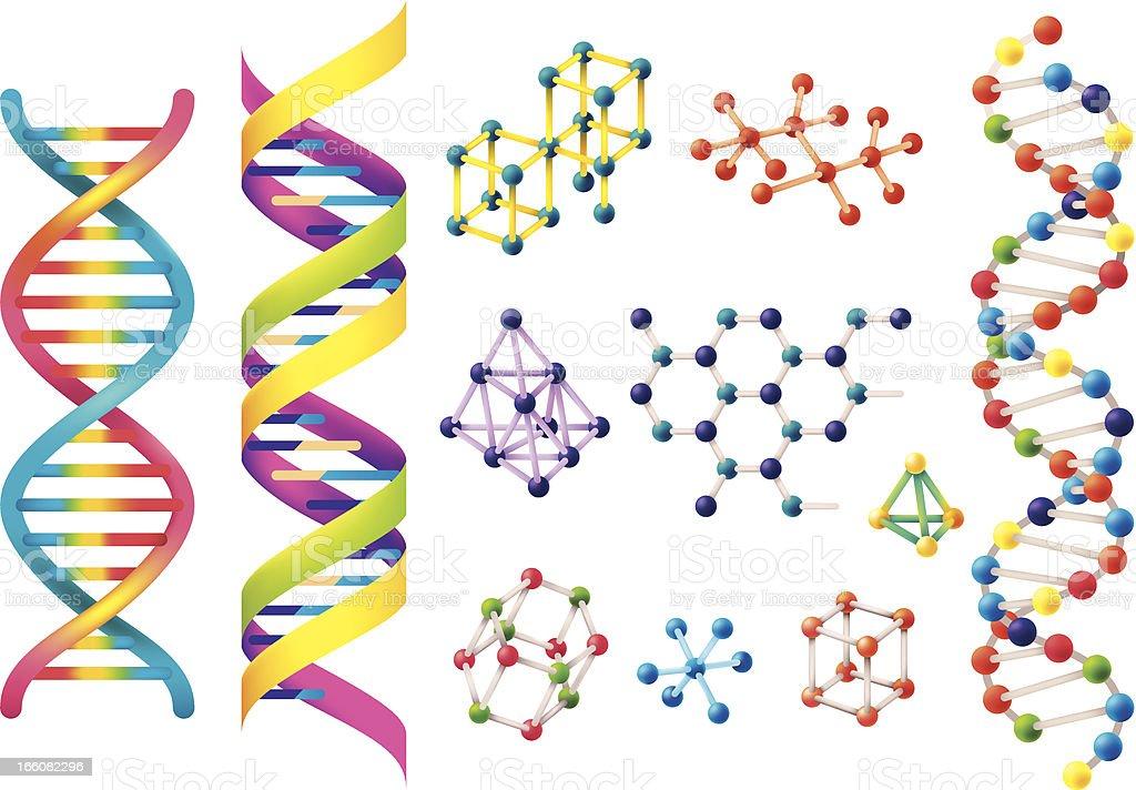 Set of assorted colorful DNA models vector art illustration